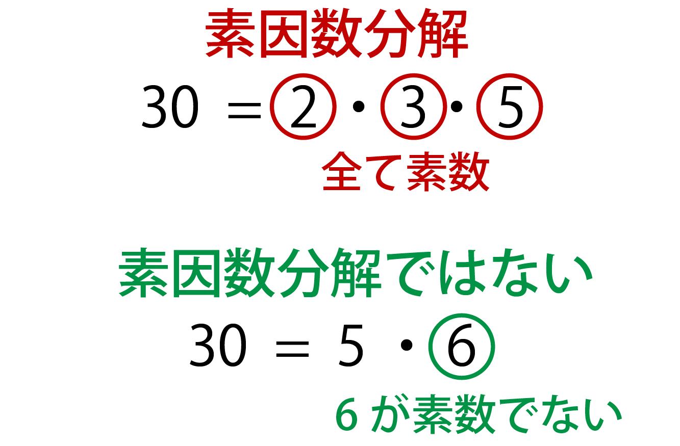 素因数分解の解説画像