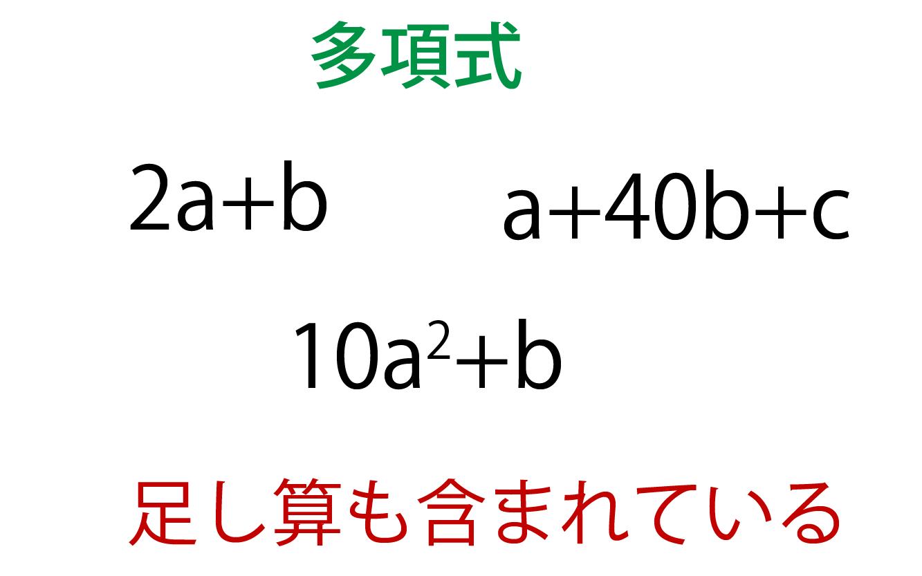 多項式とは何かの解説画像