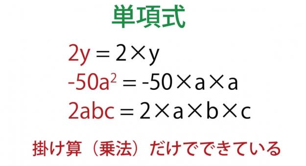 単項式の全てがこれでわかる!単項式の係数と次数、乗法・除法や多項式との違いまで