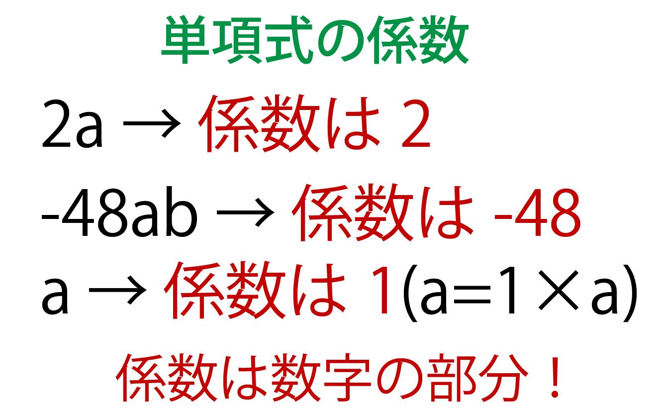 単項式の係数の解説画像