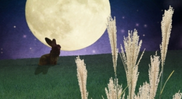 お月見とは?お月見の歴史を知ってもっと楽しく過ごそう!
