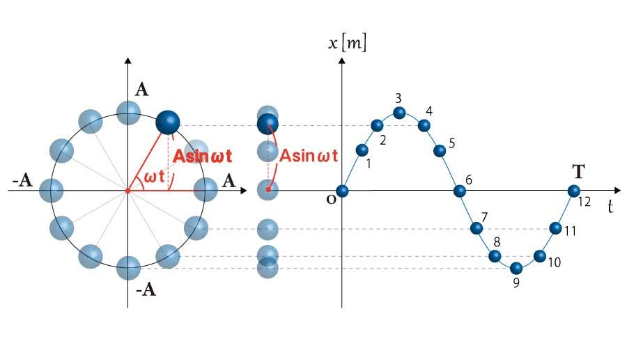 単振動の変位の図