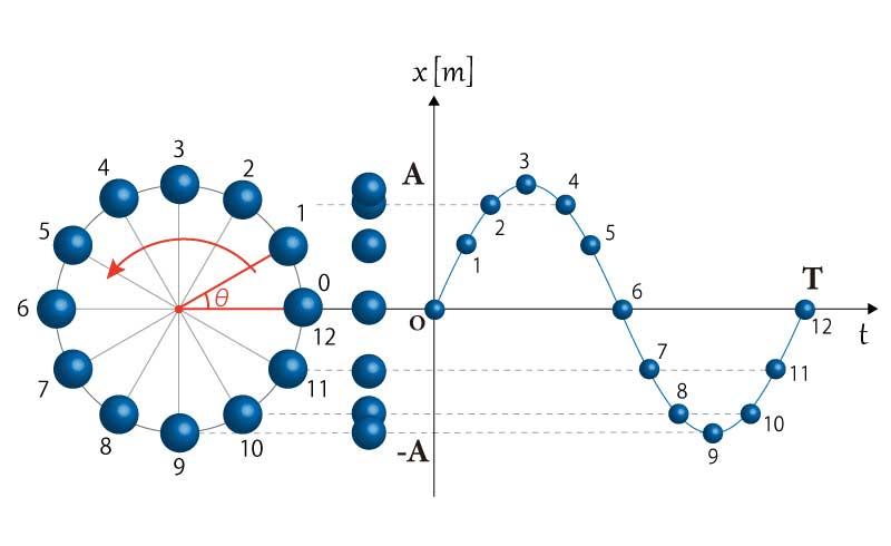 単振動の基本の動き