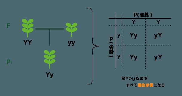 P1世代の構造図