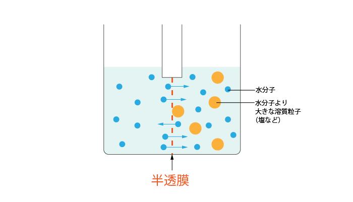 半透膜とは②蒸留水と食塩水