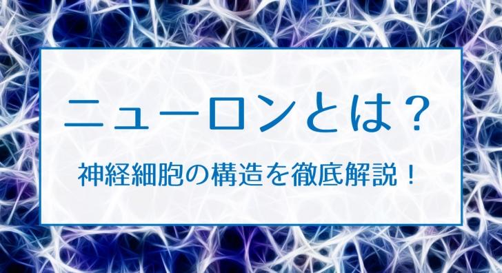 ニューロン(神経細胞)とは?構造や仕組みを理解しよう!